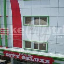 Hotel City Deluxe in Raiwala
