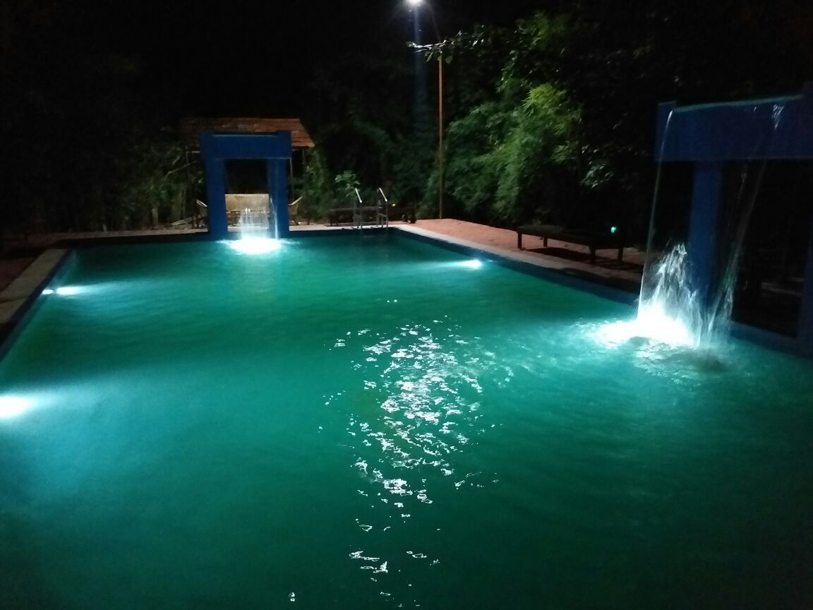 Hotel Kanha Treasure in Forest in Kanha