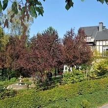 Hotel La Ferronniere in Glaumont
