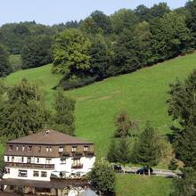 Hotel Landgasthof Grüner Baum in Hirschhorn