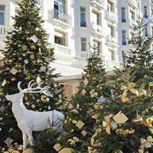 Hotel Martinez - In The Unbound Collection By Hyatt in Cannes