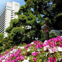 Hotel New Otani Osaka in Osaka