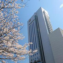 Hotel Nikko Kochi Asahi Royal in Kochi