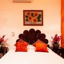 Hotel Posada de Roger in Mezcales