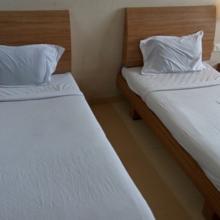 Hotel Raj Palace in Thasra