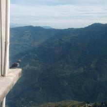 Hotel Sai Nilayam in Darjeeling