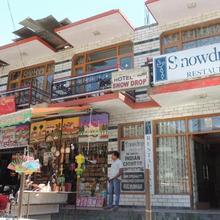 Hotel Snowdrop in Manali