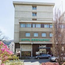 Hôtel Du Rhône in Basse-nendaz