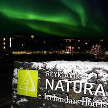 Icelandair Hotel Reykjavik Natura in Reykjavik