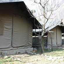 Into Wild Himalaya Camps Tirthan Valley in Shoja