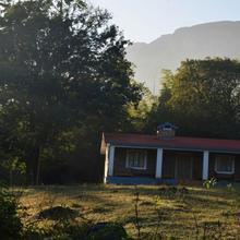 Discovery Village Masinagudi in Madumalai