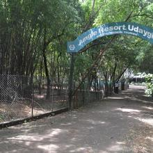 Jangle Resort Udaigiri in Salamatpur