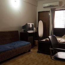 Japanese Lodge Hydrangea in Dhaka