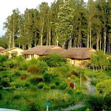 Jim's Jungle Retreat in Ramnagar