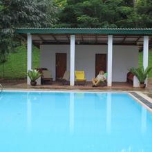 Jungle Tide in Kandy