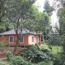 Jungle Valley Resort in Meppadi