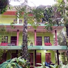 Jungle View in Thekkady