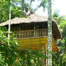 Kalidasa Tree House And Villa in Panamaram