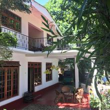 Kandy Shady Trees Villa in Kandy