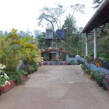 Kaveri Estate Stay in Coorg