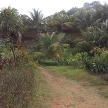 Key Hole Camping in Roatan
