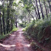 Kumaragiri Farm And Nature Camp in Malappuram