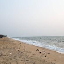 Kuzhupilly Beach House in Cochin