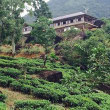 La Montagne in Deniyaya