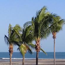 La Perla River Beach In Sancarlos in Panama City