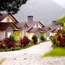 Latigre Resort in Garjia