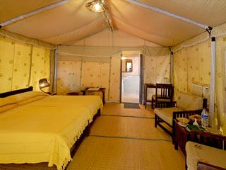 Lion Safari Camp in Bherala