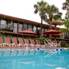 Magic Tree Resort in Orlando