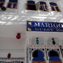 Marigold Guest House in Udaipur