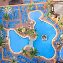 Medplaya Hotel Flamingo Oasis in Benidorm