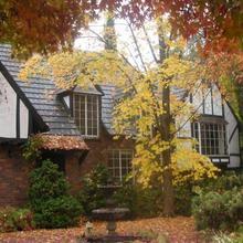 Merrimeet Cottages in Bright