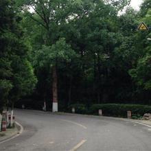 Mianyang Luofushan Hongyun Hostel in Lanzhou