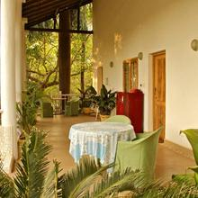 Michèle's Garden in Goa