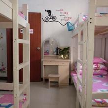 Migratory Bird Fly Hostel in Shenzhen