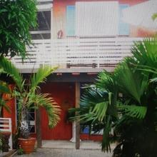 Mikuzi in Kingston