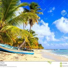 Mildreth Beach Punta Cana in Punta Cana