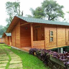 Misty Mountain Plantation Resort in Mundakayam
