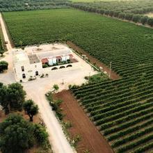 Monteciminiello in Manduria