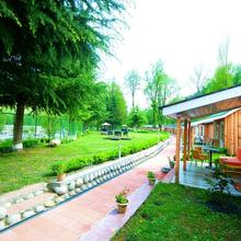Morpheus Valley Resort in Kasol