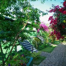 Mountain Trail Resort in Chinnakanal