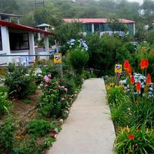 Mountain Trail Resort in Almora