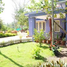 Mystic Greens Homestay, Coorg in Kushalnagar