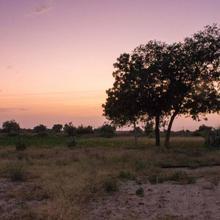 Mystic Smiles Farmstay in Jaisalmer