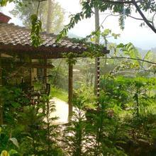 Natural Mystic Sanctuary in Deniyaya