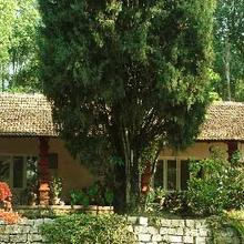 Nature Craft Homestay in Chikmagalur