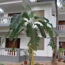 Nk Holiday Apartments Benaulim Goa in Nuvem